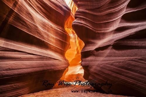 Arizona 2 017new