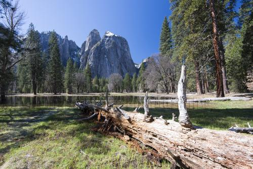 yosemite-day-2-sunday-valley-and-river-131